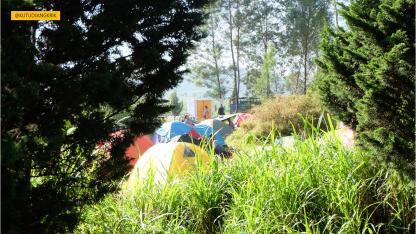 tempat camping di dieng culture festival (4)