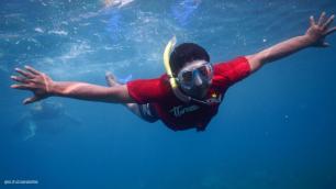 snorkling di karimun jawa (3)