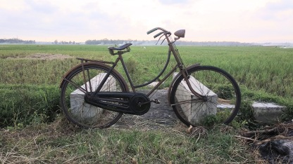 Sepeda Raleigh
